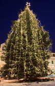 Christmas tree in town — Stock Photo
