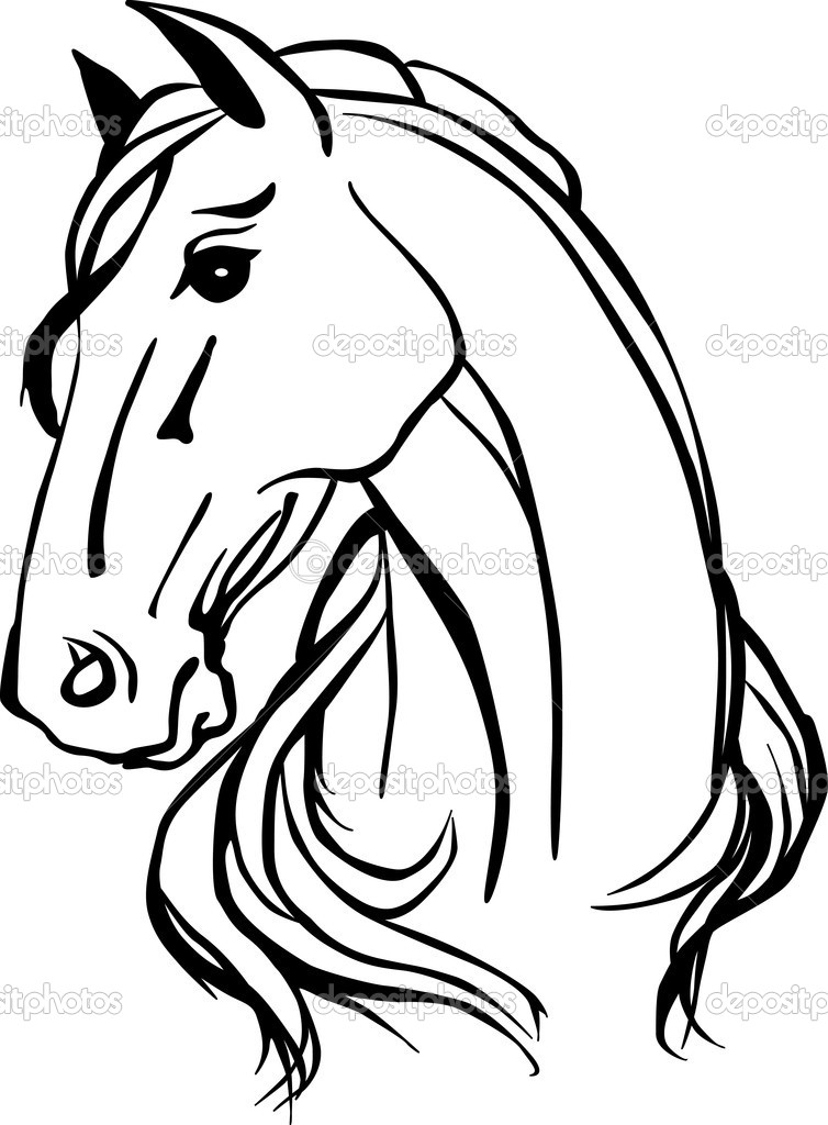Line Drawings of Horses Heads Horse Head Drawing
