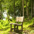 Stock Photo: Forest Seat