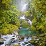 Amazing Waterfall — Zdjęcie stockowe #7693894
