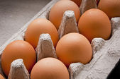 Egg Carton — Stock Photo