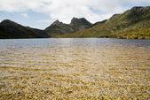 Cradle Mountain, Tasmania — Stock Photo
