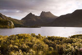Cradle mountain, tasmanien — Stockfoto