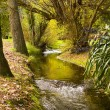 Seasonal Stream - Stock Photo