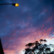 Foto Stock: Street-lamp Sunset