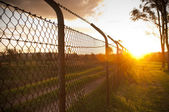 Sunset Fence — Stock Photo