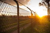 Vedação por do sol — Foto Stock