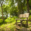 Forest Seat — Stock Photo
