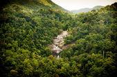 Cascada de la selva — Foto de Stock