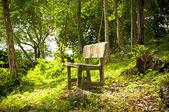лес сиденья — Стоковое фото