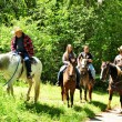Group Outing, Horse Ride — Stok fotoğraf