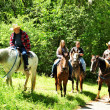 Foto Stock: Group Outing, Horse Ride