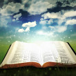 Stock Photo: Glowing Open Bible