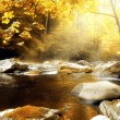 Autumn Creek — Stock Photo #7689915