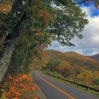Mountain road during Autumn — Stock Photo