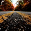 Close up of yellow lines on road — Stok fotoğraf