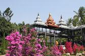 Giardino botanico in thailandia — Foto Stock