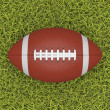Stock Photo: Americfootball ball