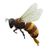 Främmande besökare är teleportera till planetenハチ - 昆虫 — ストックベクタ