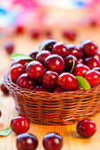 Fresh red cranberries — Stock Photo