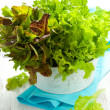 Mixed lettuce in a bowl — Stock Photo
