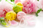 Easter eggs and spring flowers — Stock Photo