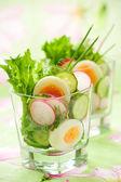 Gurka, rättika och ägg sallad — Stockfoto