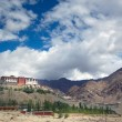Big Indian Monastery in city of Leh — Stock Photo #7955033