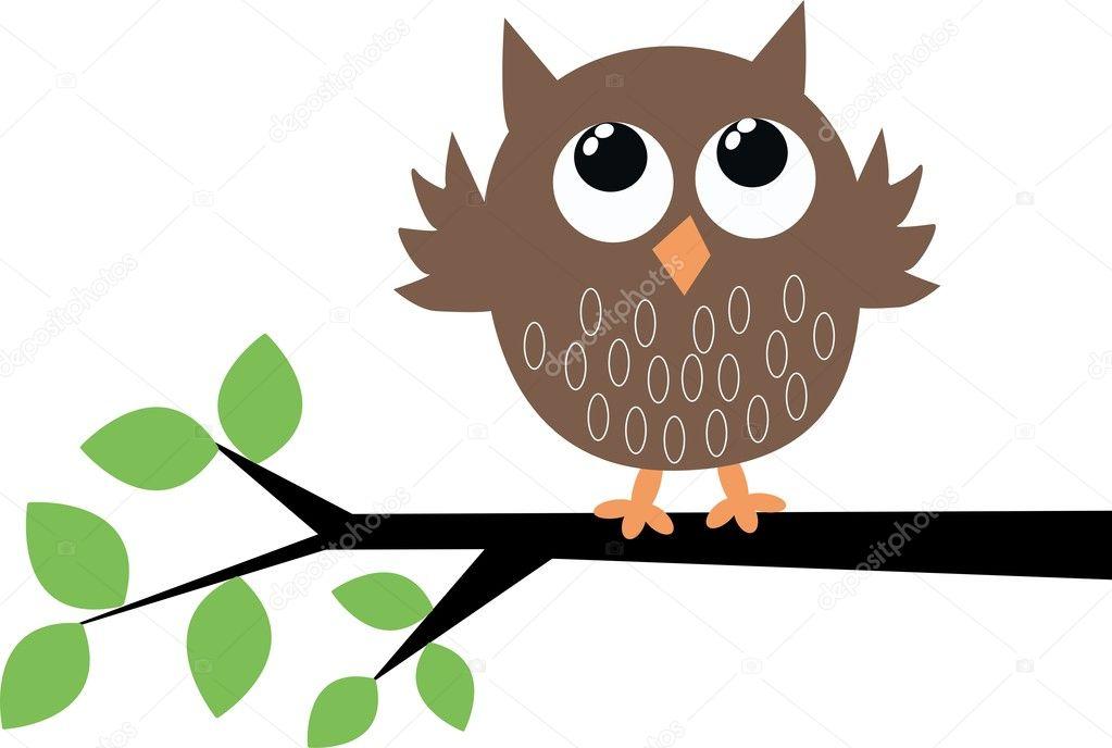 一只可爱的小棕色猫头鹰