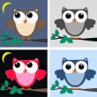 Stockvector : Color owls clip art