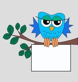 Blue owl with a placard — Stock Vector