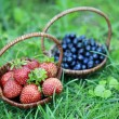 Strawberries and blueberries on the green grass — Stock Photo