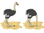 Cartoon ostrich with head below sand — Stock Vector
