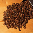 Fine Arabica Coffee Beans — Stock Photo