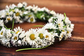 Crown made of daisies — Stock Photo