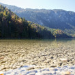 Alpine Lake in Fall - Foto Stock