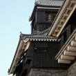 Detail of Japanese Castle — Stock Photo