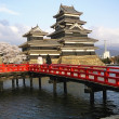 Stock Photo: Japanese Castle