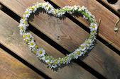 Heart symbol made of daisies — Stock Photo