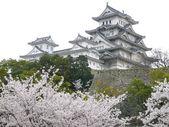 Japanese Castle Himeji — Stock Photo