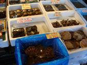 Mercato del pesce giapponese con conchiglie di mare — Foto Stock
