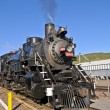 Steam Locomotive — Stock Photo #7775026
