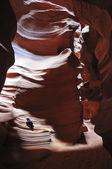 Vrána v antelope canyon — Stock fotografie