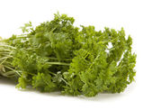 Green Parsley — Foto Stock