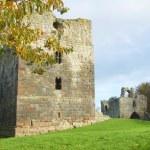 Etal castle tower and gatehouse — Stock Photo #7942546