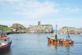 Dunbar castle ruins, harbour and fishing boats — Stock Photo