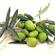 Aceitunas — Stock Photo