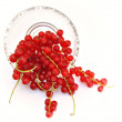 Frutos rojos — Stock Photo