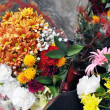 Ramo de flores — Stock Photo