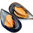 Dos mejillones - Stock Photo